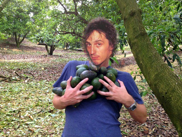 Kuvahaun tulos haulle izzy stradlin avocados pictures