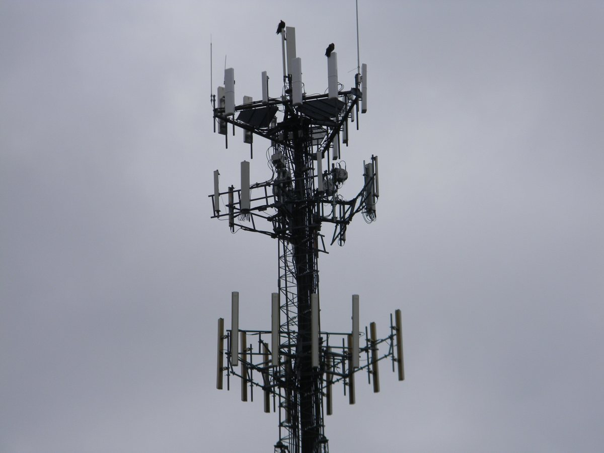 Network Vision Site/Tower Photos - North Oxford, Mass.