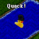 Duck in a Top Hat