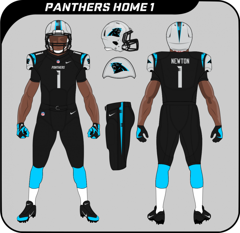 Carolina Panthers Home 1.png