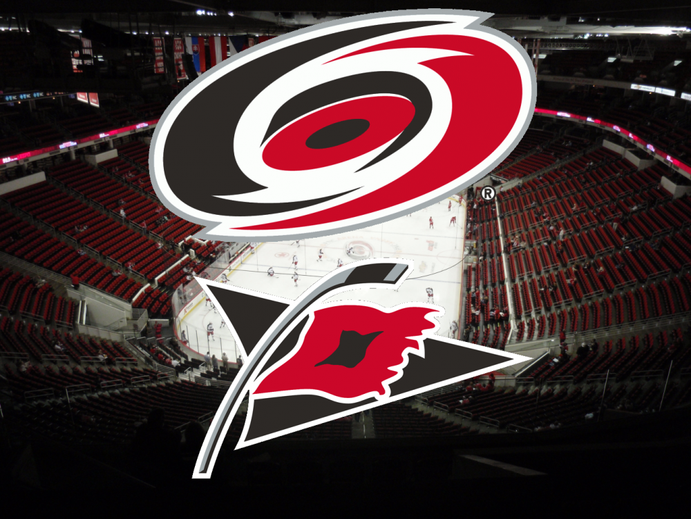 canes banner.png