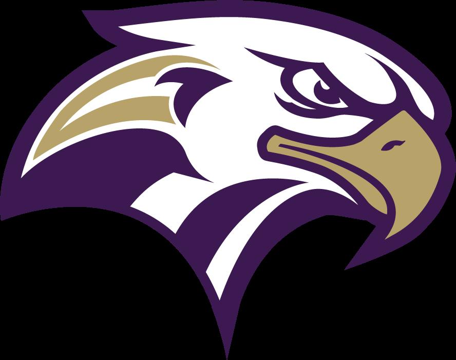 HS Eagle Concept - Concepts - Chris Creamer's Sports Logos ...