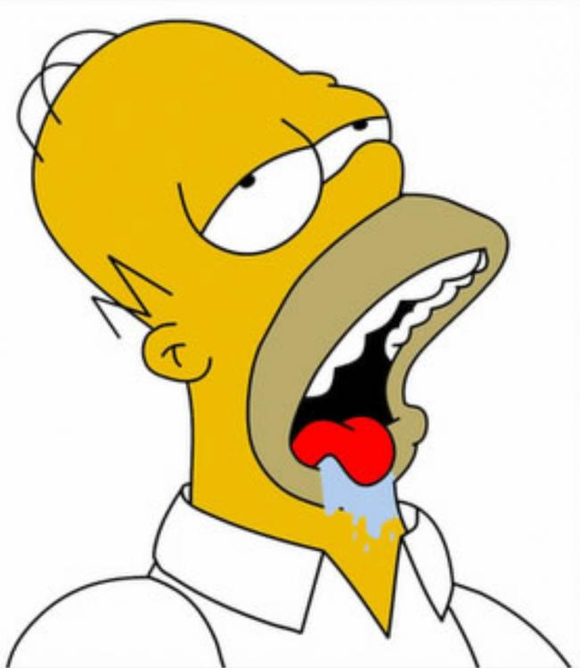 homer-simpson-drooling a.jpg