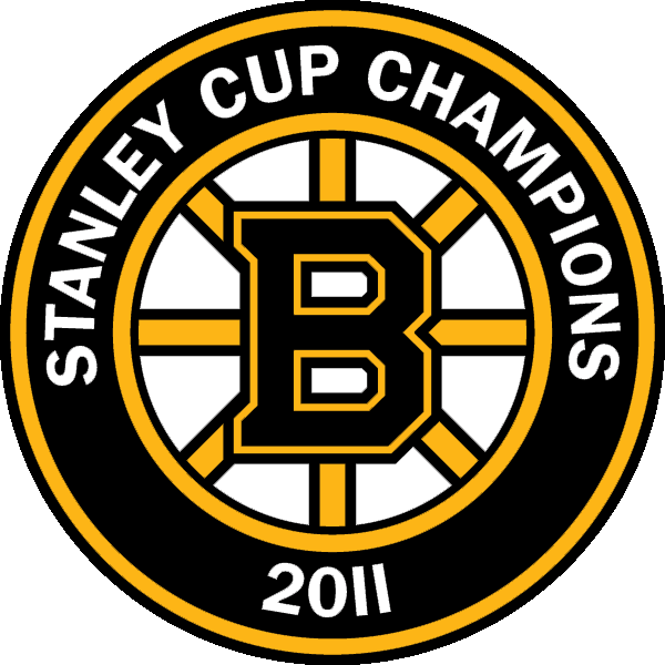 Boston Bruins Stanley Cup Champions Banner Concept