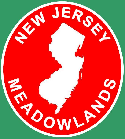 Meadowlands midfield logo.PNG