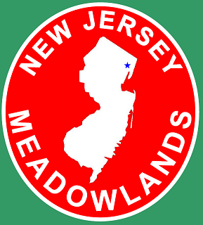Meadowlands midfield logo 50 png.PNG