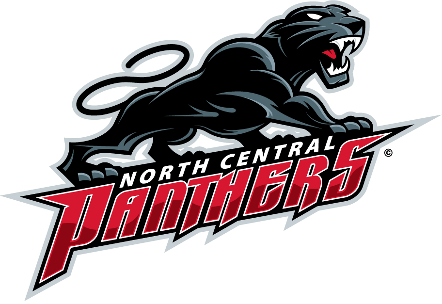 nchs-red-wgt-swim-team.png
