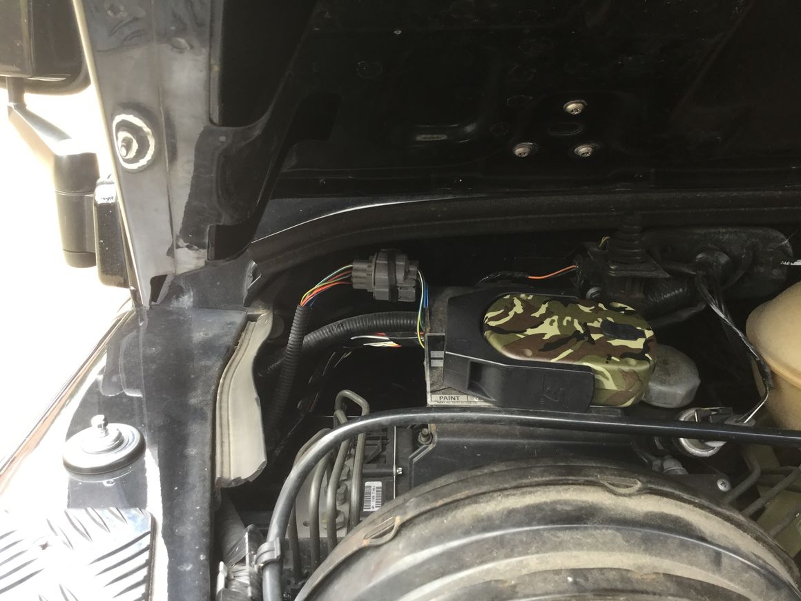 Finding A Switched Live In Engine Bay Puma 63 Plate 90