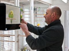 Alan putting bird in cage