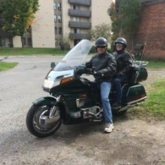 trampsgoldwing