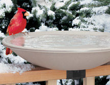 EZ - Tilt Heated Birdbath