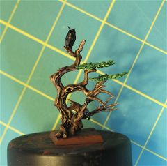 Dryad: Side