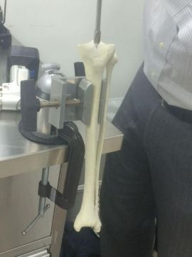 Intramedullary rod placement in sandstone model of tibia