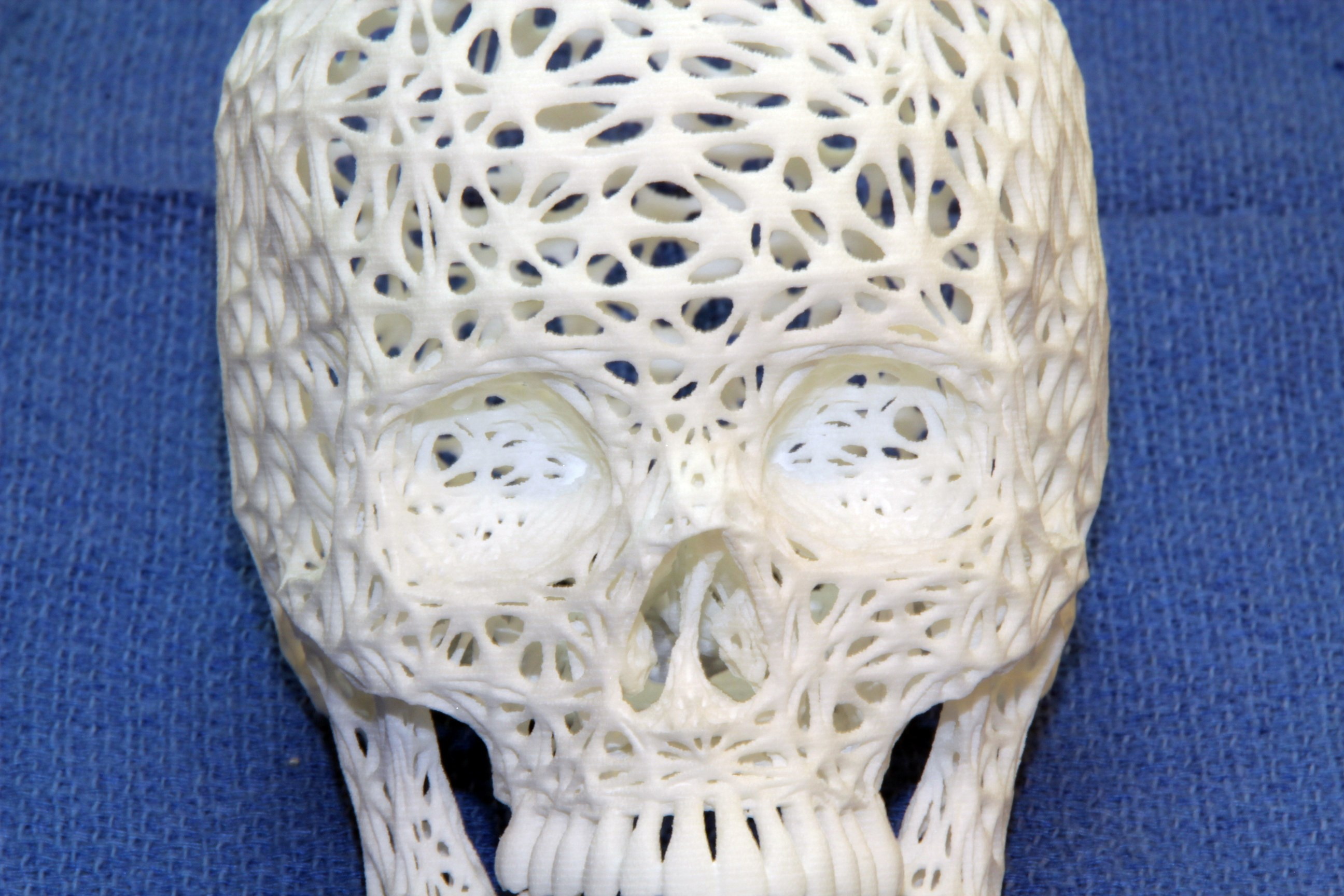 3d printable lace skull free for download 3d printing in