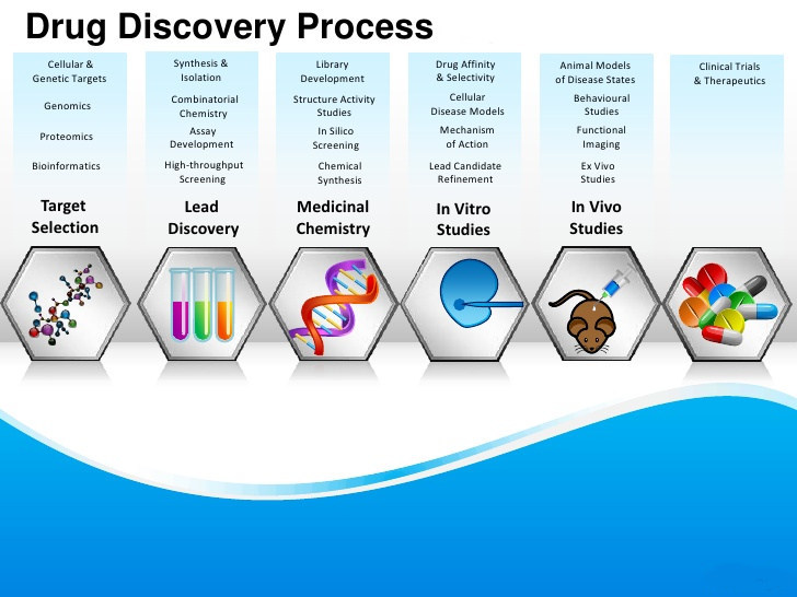 large.drug-discovery-process.jpg