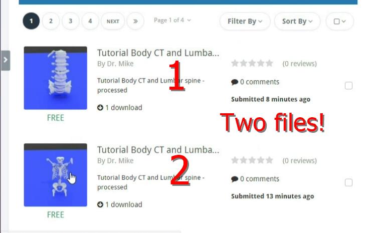 How to Convert Multiple 3D Printable Bone Model STL Files