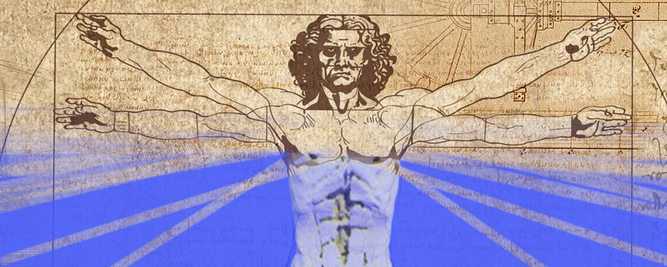 "Graphic illustration of muscle anatomy models overlaid on Da Vinci's ""Vitruvian Man"""