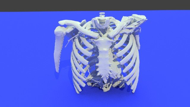 Create a 3D-Printed Rib Cage and Thorax from STL Files