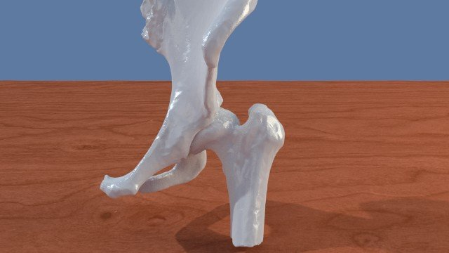 A Foot 3D Model and Other Anatomical Models of the Lower Extremities