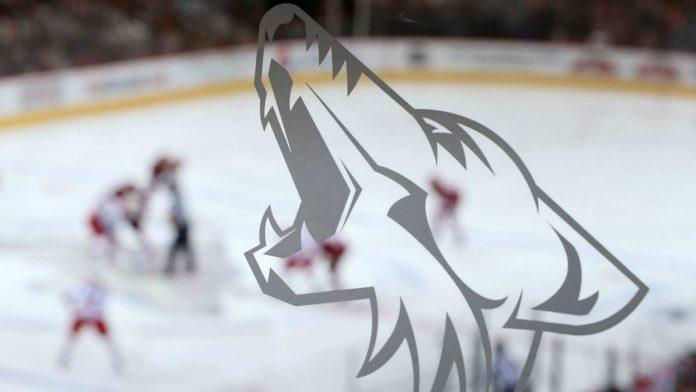 "Coyotes New Owner: ""We Are Staying in the Desert"""
