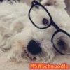 MSWschnoodle