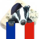 MonsieurBadgerCheese