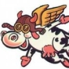 Flyingcow29