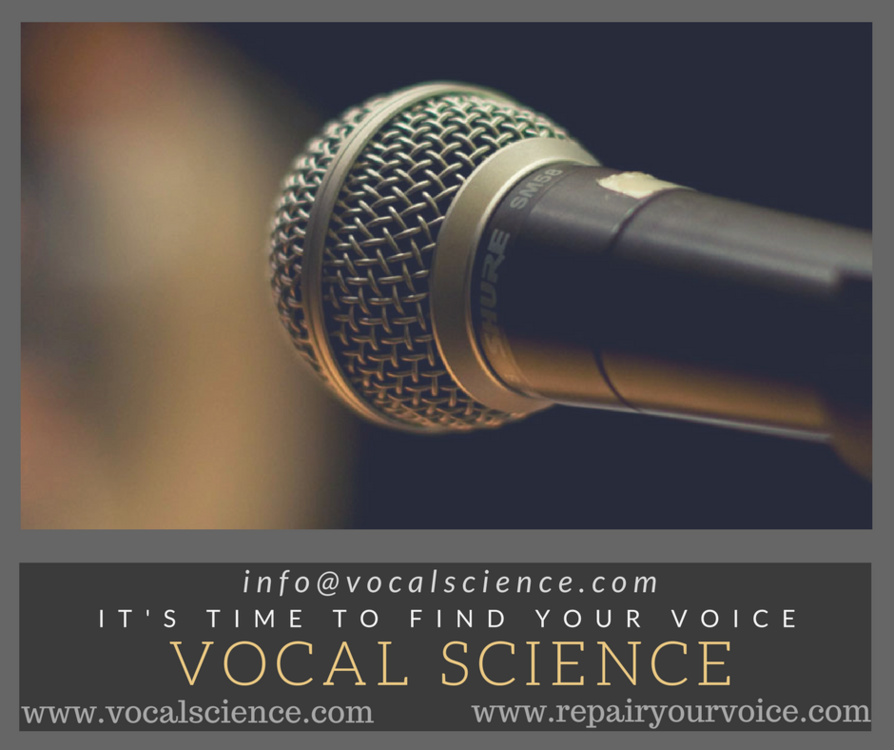 Vocal Science - It's Time To Find Your Voice - Facebook Ad 2.png