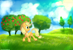 Apple pone in it's natural environment