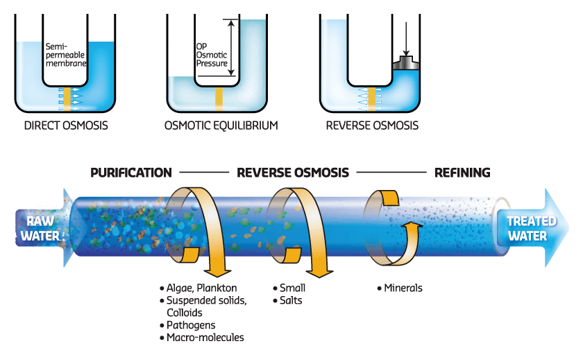What is reverse osmosis?  How it can affect your health?