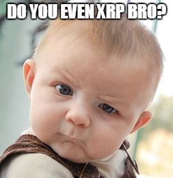 do you even xrp bro.jpg