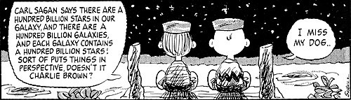 peanuts-i-miss-my-dog.jpg
