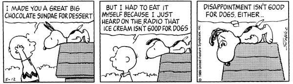 Peanuts-diappointment.jpg