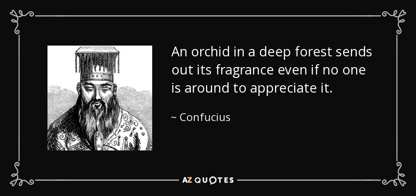 quote-an-orchid-in-a-deep-forest-sends-out-its-fragrance-even-if-no-one-is-around-to-appreciate-confucius-87-64-51.jpg