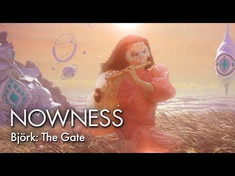 Essence Recognition as Art - BJORK - THE GATE