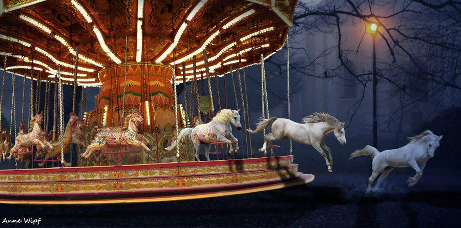 freedom the carousel _ by anne wipf.jpg