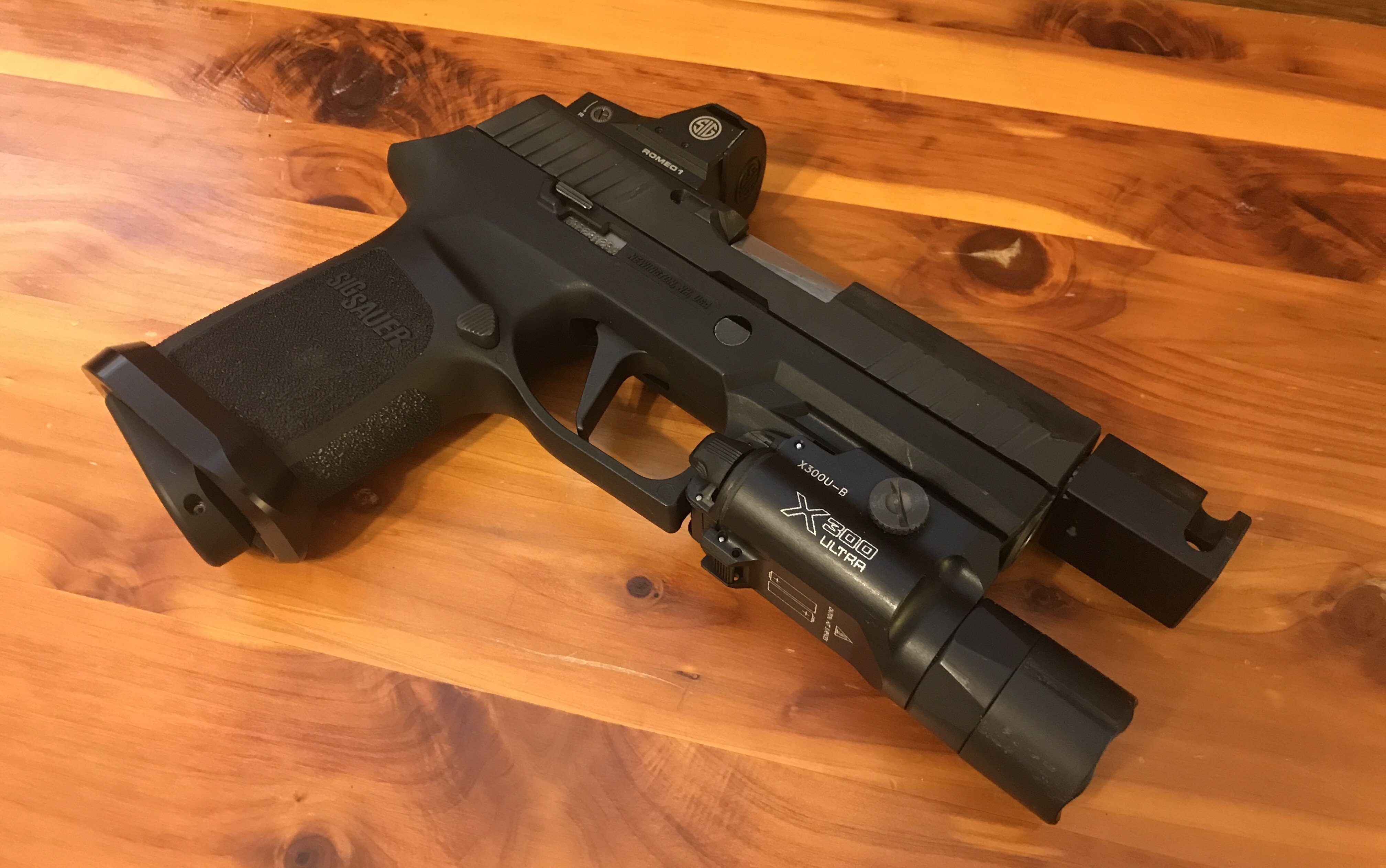 Introducing: Project Nemesis - The P320 Roland Special