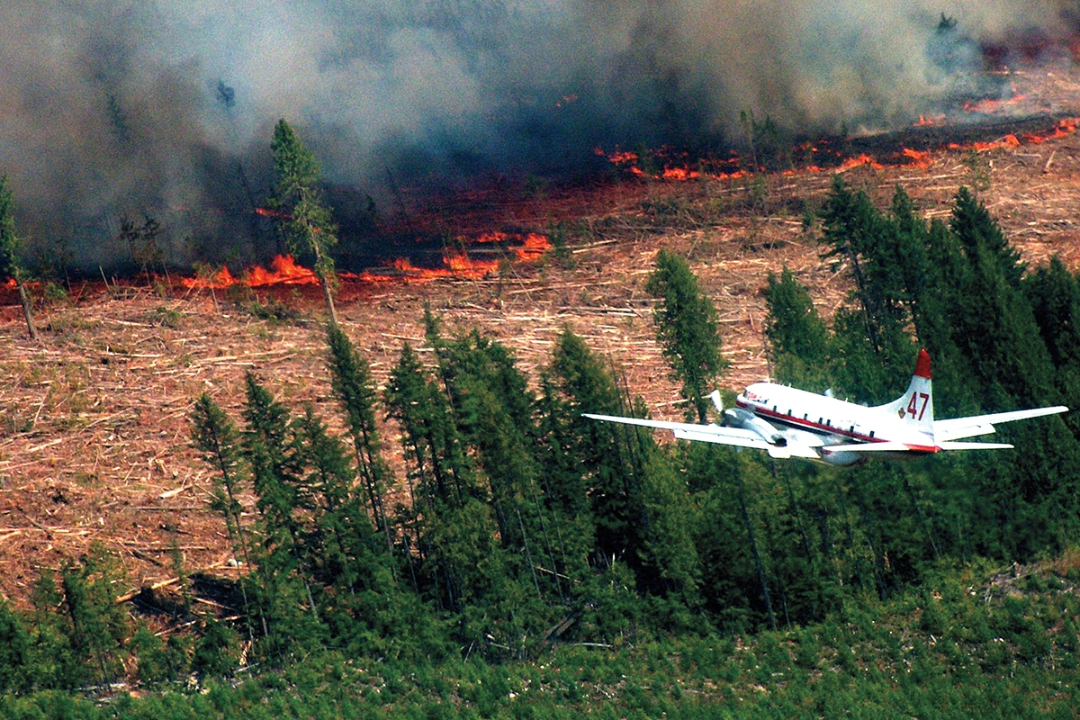 2020-03-05 The forest-industrial complex's Molotov clearcuts