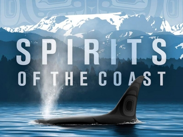 Orcas in Science, Art and History