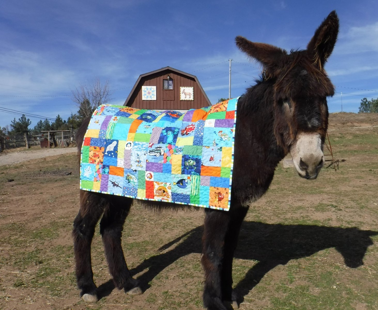 Boone with Andre baby quilt 2.jpg