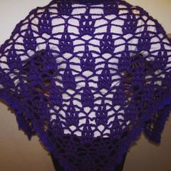 Through The Grape Vine Shawl