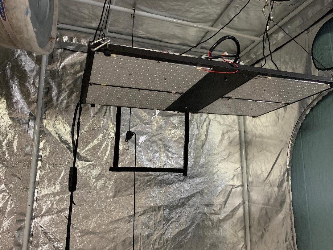 600w True wattage LED HLG600H Quantum boards - The Grow Room