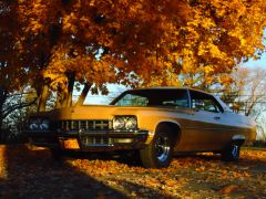 11 4 autumn buicks0002