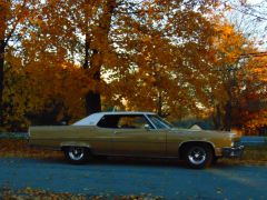 11 4 autumn buicks0003