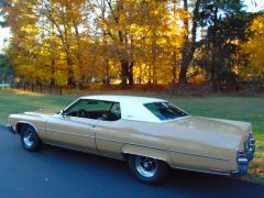 11 4 autumn buicks0004