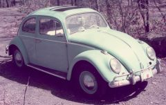 "The 1964 VW known as ""Thrashwell Snailbee"""