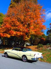 10 26 autumn buicks0002