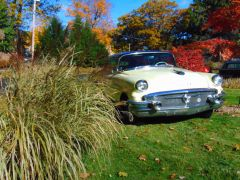 10 26 autumn buicks0005