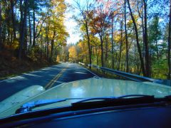 10 30 autumn buicks0001