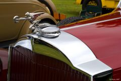 1932 Packard 904 Roadster - red - mascot